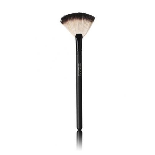 Professional Fan Powder Brush